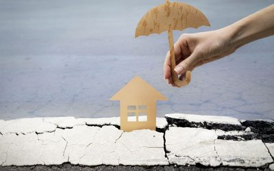 Immobilienrettung